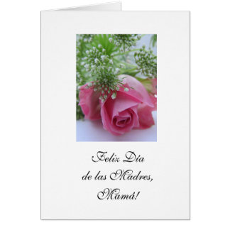 Spanish:La mejor madre del mundo/ Mother's day Card