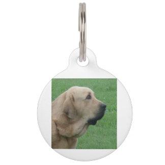 spanish ma.png pet ID tag