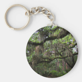 Spanish Moss Adorned Live Oak Basic Round Button Keychain