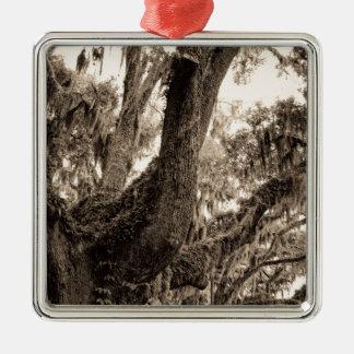 Spanish Moss Adorned Live Oak In Sepia Tones Silver-Colored Square Ornament