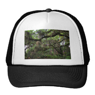Spanish Moss Adorned Live Oak Trucker Hat