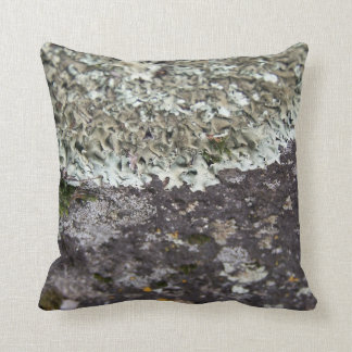 Spanish Moss & Granite Throw Pillow