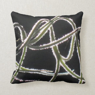 Spanish moss knot pillow