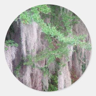 Spanish Moss Sticker