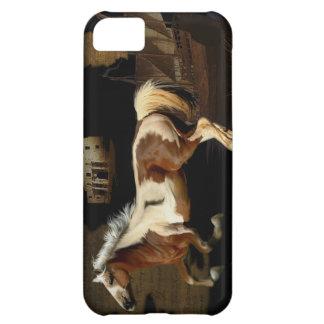Spanish Mustang New Worlde Horse-lover Case
