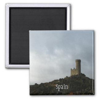 Spanish Sentinel Magnet