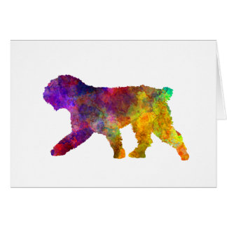 Spanish Water Dog in watercolor Card