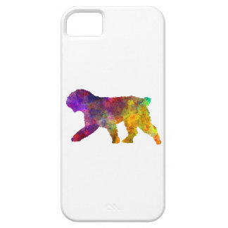Spanish Water Dog in watercolor iPhone 5 Cases