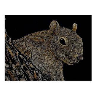 Sparkie the Squirrel Postcard