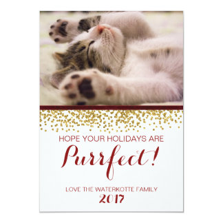 Sparkling Glitter Ribbon Christmas  Pet Photocard Card
