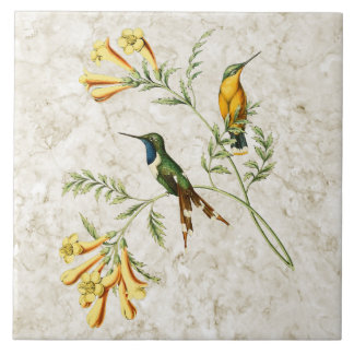 Sparkling Tailed Hummingbird Ceramic Tile