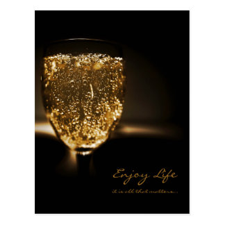Sparkling Wine Champagne Inspirational Quote Life Postcard