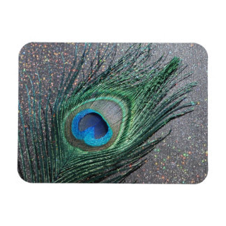 Sparkly Black Peacock Feather Still Life Rectangular Photo Magnet