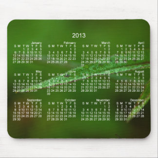 Sparkly Green Leaves; 2013 Calendar Mouse Pad