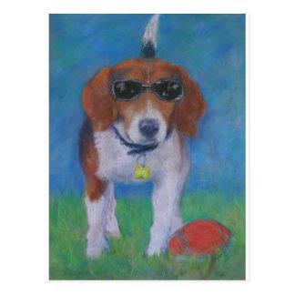 Sparky Dog Cool Dog Postcard