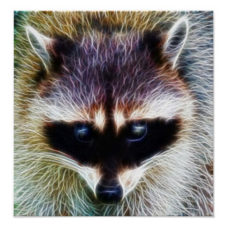 Sparky the Raccoon Poster