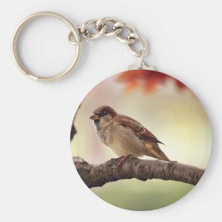 Sparrow Bird in Tree Basic Round Button Keychain
