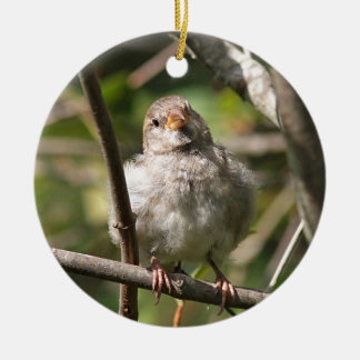 Sparrow Ceramic Ornament