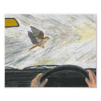 Sparrow flying in front of a car poster