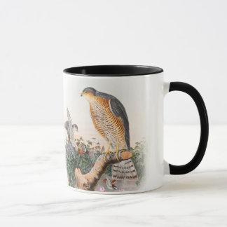 Sparrow Hawk John Gould Birds of Great Britain Mug