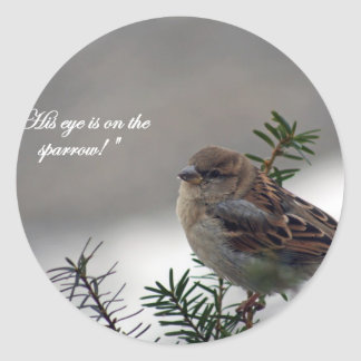 Sparrow, His eye is on the Sparrow! Classic Round Sticker