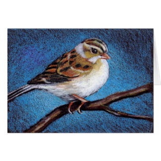 SPARROW: OIL PASTEL: BIRD: NOTE CARDS