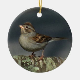 Sparrow Ornament