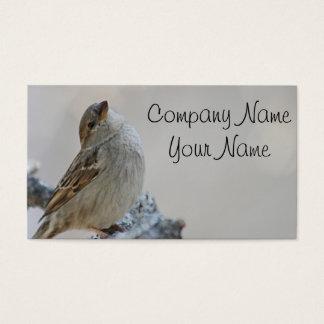 Sparrow photo business card
