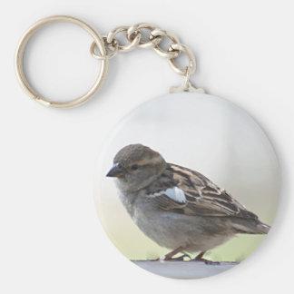 Sparrow photo keychain
