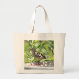 Sparrow photo large tote bag