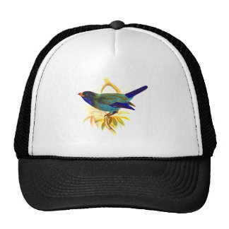 Sparrow Trucker Hat