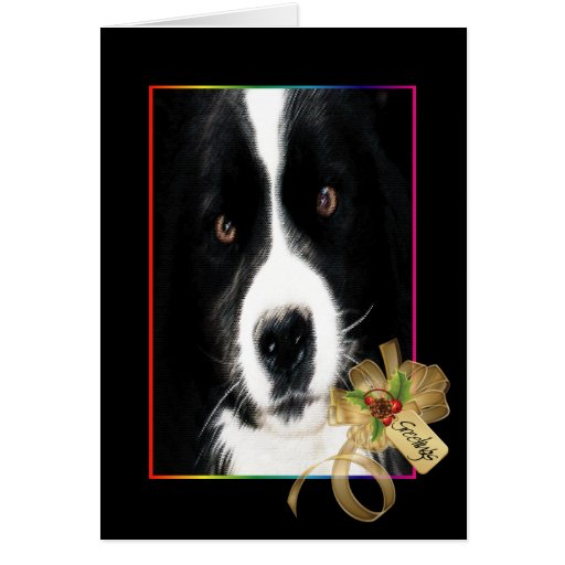 Spatz, Dog of Christmas Past Cards