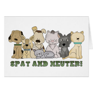 Spay and Neuter Greeting Cards