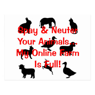 spay and neuter post card