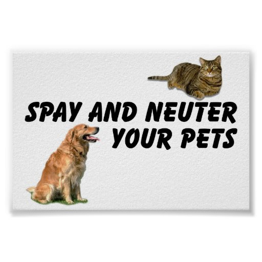 Spay and Neuter Print