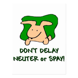 spay and neuter your pets postcard