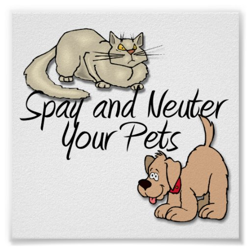 Spay and Neuter Your Pets Posters
