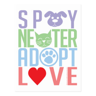 Spay Neuter Adopt Love 2 Post Cards
