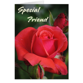 Special Friend Rose Greeting Card