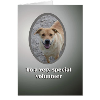 Special Volunteer Thank You Greeting Card