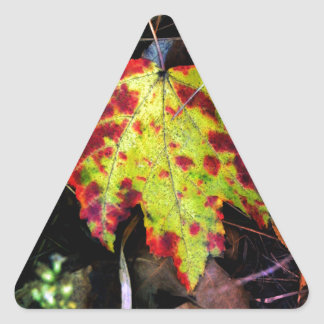 Speckled Autumn Leaf Triangle Sticker