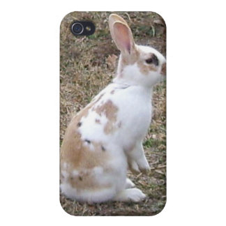 Speckled Bunny Rabbit Case For iPhone 4