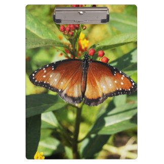 Speckled Butterfly Clipboards
