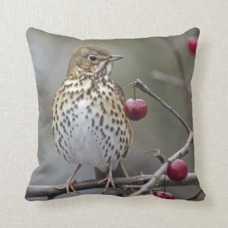 Speckled Songster Pillow