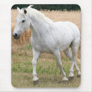 Speckled White Horse Mouse Pad
