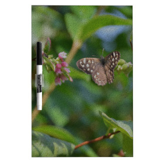 Speckled Wood Butterfly Dry-Erase Boards