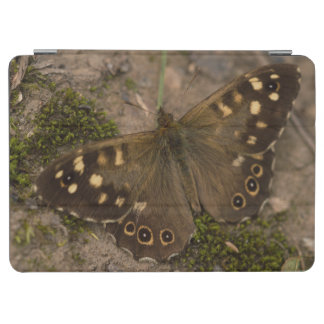 Speckled Wood Butterfly iPad Air Cover