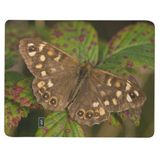 Speckled Wood Butterfly Journal