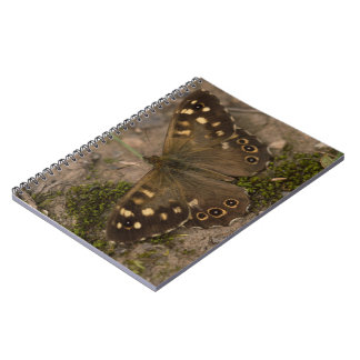 Speckled Wood Butterfly Notebook
