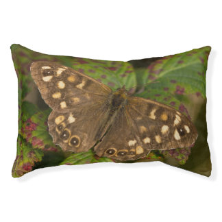 Speckled Wood Butterfly Pet Bed